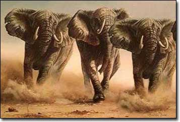 Three Stampeding Elephants