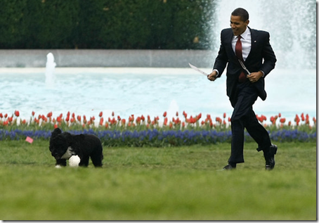Obama-chases-Bo-with-Utensils-1