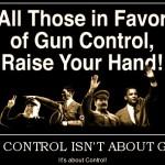 Guns, History and Evil