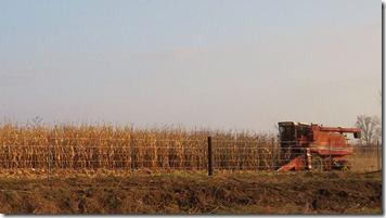 800px-Iowa_harvest_2009