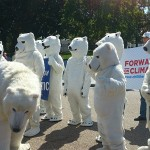 "Greenies sweat in their crusade to ""save"" the Polar Bears  Photo credit: Payton Chung (CC-By-2.0)"