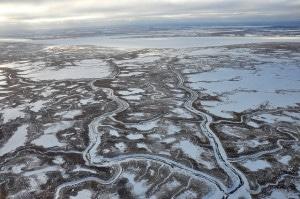 The Alaskan tundra. Still hotter than Europe's economy.